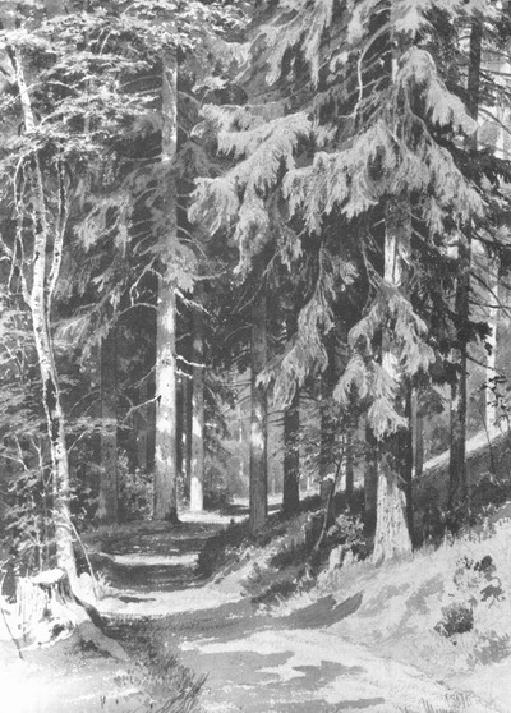 Дорожка в лесу. 1891