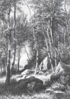 На краю березовой рощи. Валаам.1859-1860