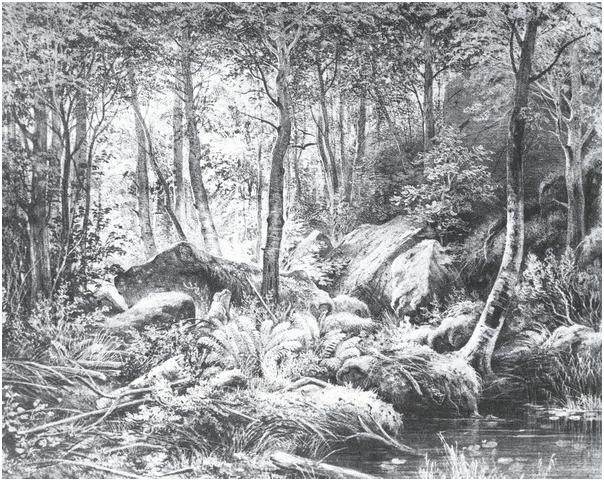 Трущоба (Вид на острове Валааме).