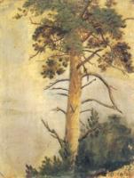 Сосна на скале.Этюд.1855