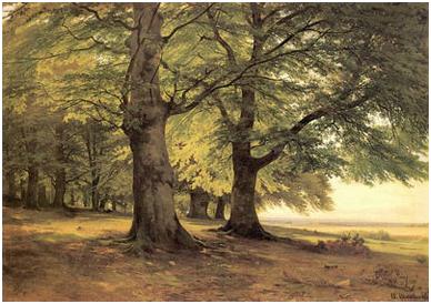 Тевтобургский лес